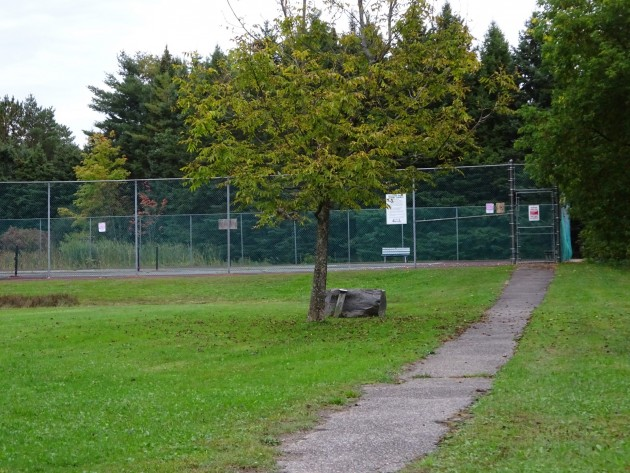 Existing path to Meadow Park Tennis Court
