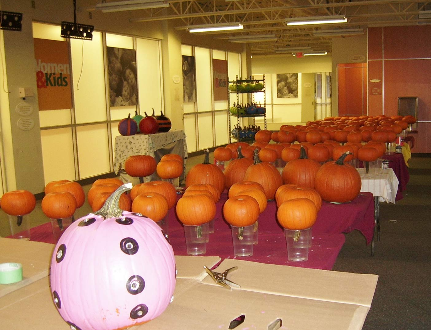 Painted Pumpkin Project at Independent.