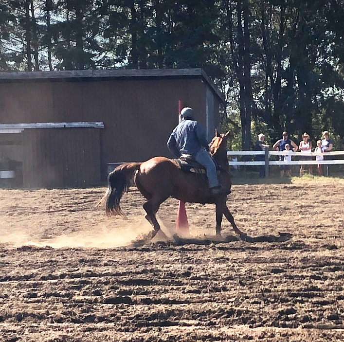A rider in the Western Horse Show puts their steed through the paces