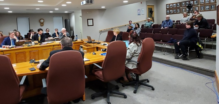 Municipal clerk Tanya Calleja explains the procedure associated with appointing a councillor as Huntsville Council and members of the audience listen at the January 28 council meeting. (Tamara de la Vega)