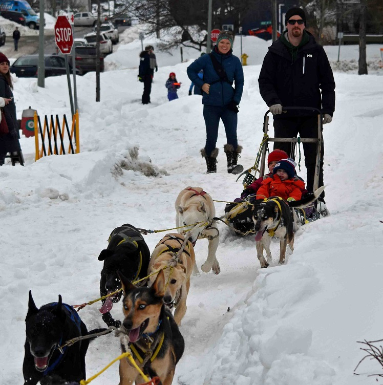 Georgia Kitchen, 7, and Henry Wheeler, 4, try out dog sledding in River Mill Park (Cheyenne Wood)