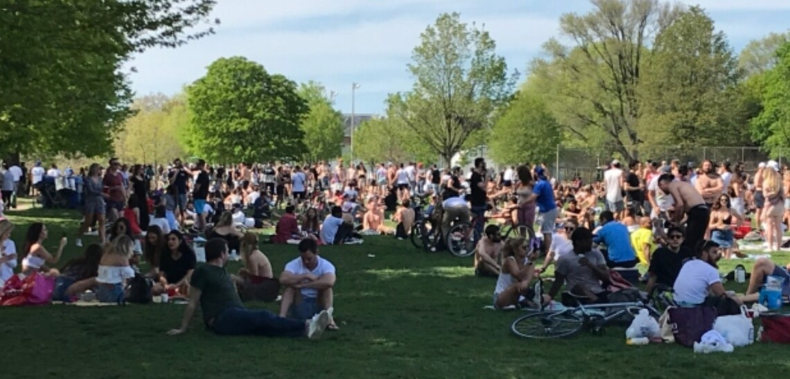Hundreds of people were at Toronto's Trinity Bellwoods Park on May 23, 2020 (CP24)