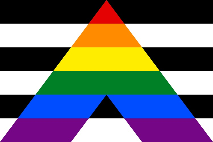 This is the straight ally flag. Straight allies are heterosexual and/or cisgender people who support equal civil rights, gender equality, LGBTQA+ social movements, and challenge homophobia, biphobia, transphobia, and any discrimination against the LGBTQA+ community. (supplied)