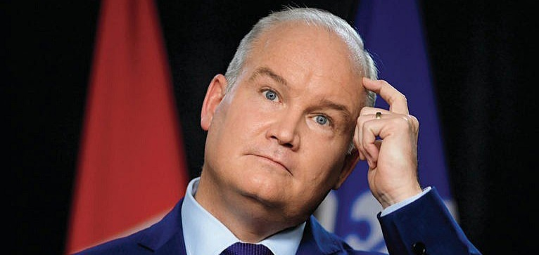 Conservative Party of Canada Leader Erin O'Toole (Sean Kilpatrick/Canadian Press)