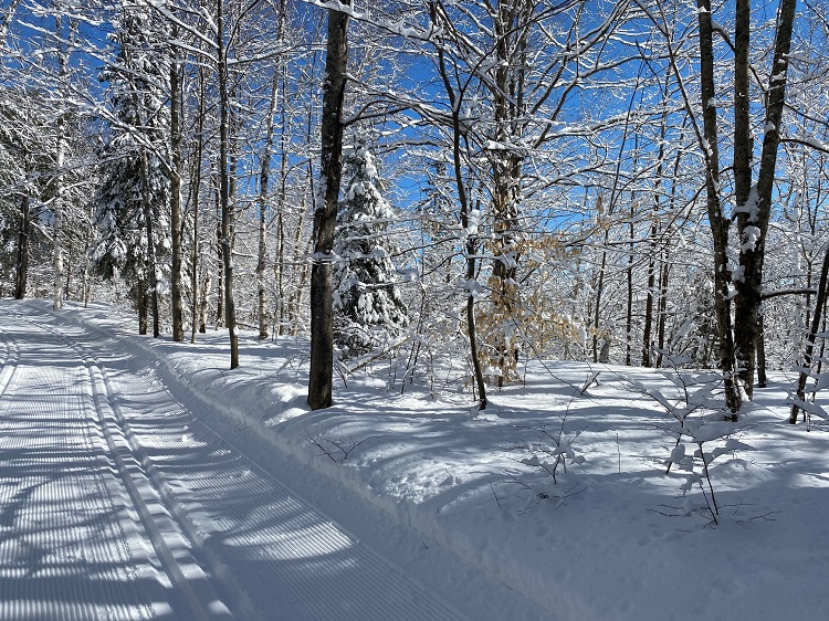 The cross=country ski trails at Arrowhead were well-maintained by park staff all season (supplied)